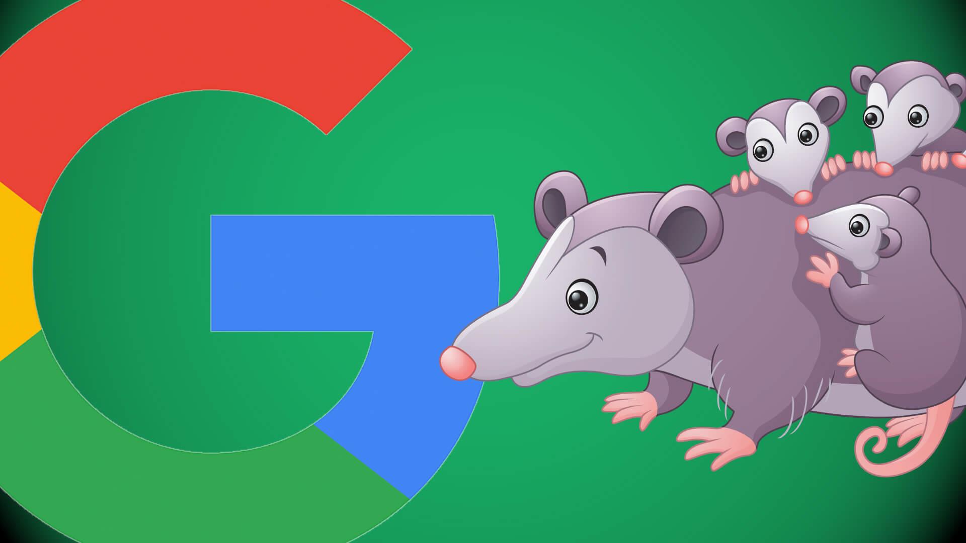 google-possum2-ss-1920