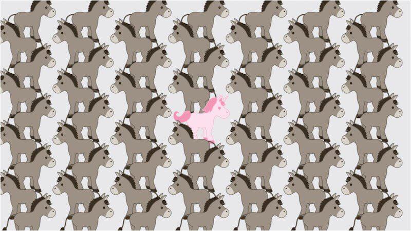 unicorn in sea of donkeys