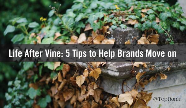 life-after-vine
