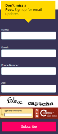 Don't overdo it with your forms. Ask only for what you need. And no CAPTCHAs.